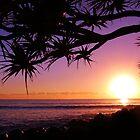 Burleigh Heads Purple Sunrise, Gold Coast, Australia - ANZAC Day 2013 by kdrummondphotos
