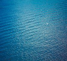 White Seagull Flying Over Deep Blue Waves by GrishkaBruev