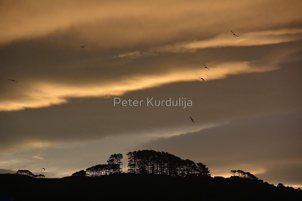You Are the Sunshine of My Life by Peter Kurdulija