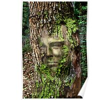 The Enchanted Tree Poster