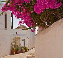 Chora, Patmos, Dodecanese Islands by Konstantinos Arvanitopoulos