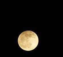 Yellow Moon by Nik Watt