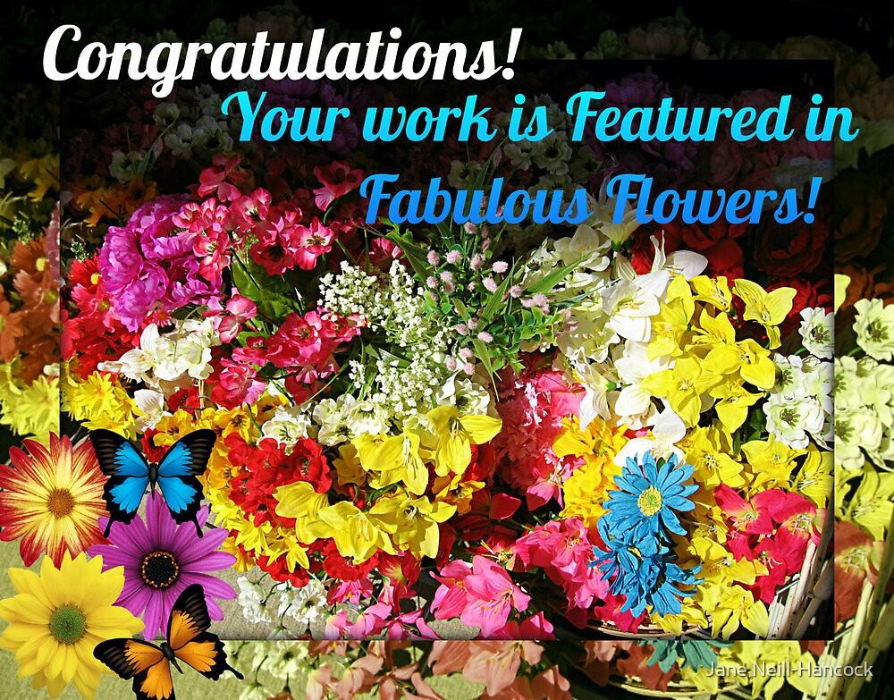 Fabulous Flowers Feature Banner by Jane Neill-Hancock