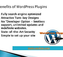 Advantages of wordpress plugins by css4me123