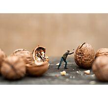 Nut Cracker Photographic Print