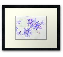 Faded Blue Flowers Framed Print