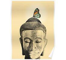 Buddha - tranquil Poster