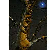 Blue Moon And Golden Snow Photographic Print