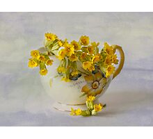 Cowslips Photographic Print