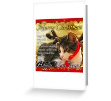 Christmas card kitty3 square Greeting Card