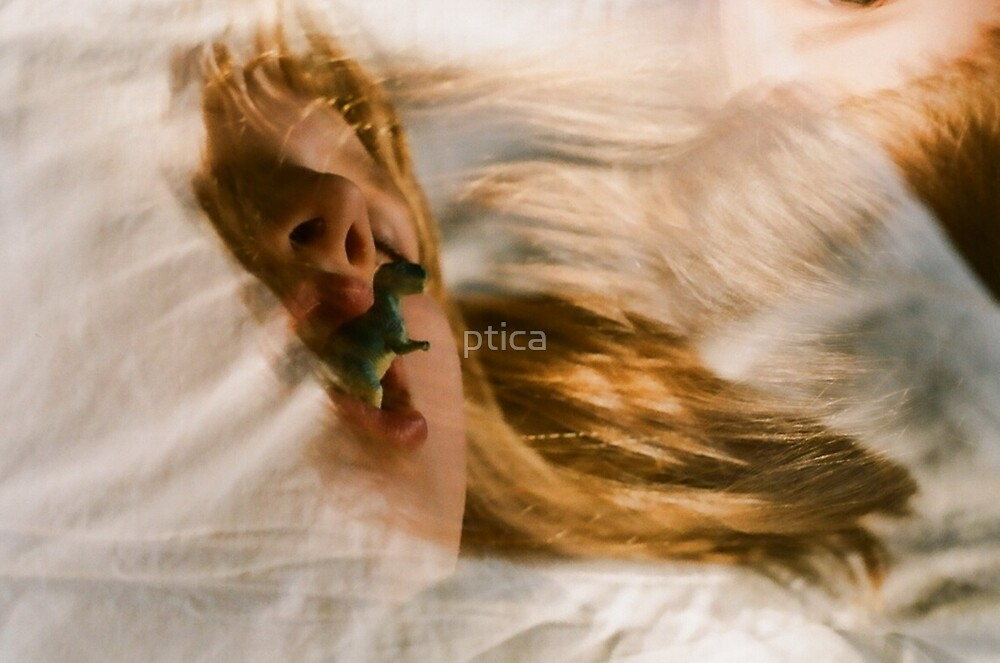 about dream by ptica