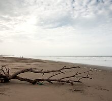 Beach Scene - Playas, Ecuador by Paul Wolf