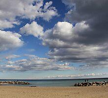 Kew-Balmy Beach by Susan Drysdale