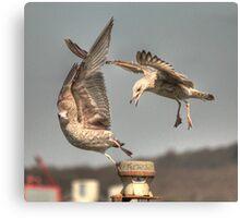 """Get off my perch!!!!!"" Canvas Print"
