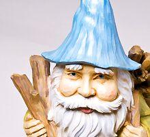 Gnome Blank Card by Edward Fielding