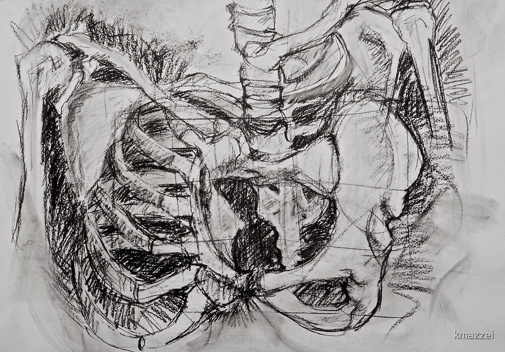 Abstracted Pelvis by kmazzei