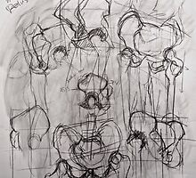 Study of Pelvis by kmazzei