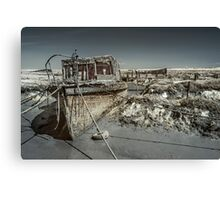 Stranded On The Marsh Canvas Print
