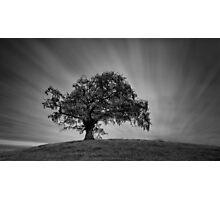 Hilltop Photographic Print