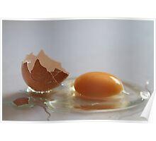 egg Poster
