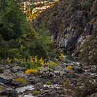 Launceston Cataract Gorge, Tasmania, Australia by fotosic