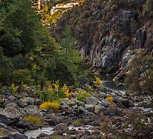 Launceston Cataract Gorge, Tasmania, Australia by fotosic