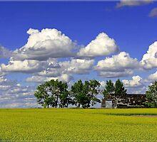 Prairie Warmth by Crista Peacey