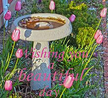 Wishing you a beautiful day by Susan S. Kline