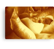 Golden Moments.... Canvas Print