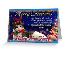 kitty card 2 Greeting Card