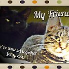 Friends (Greeting Card Specific) by Terri Chandler
