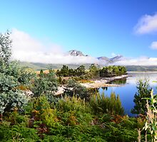 Lake Burbury  Tasmania by MisticEye