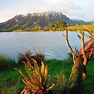 Mt Roland from Eagles Nest Retreat  Tasmania by MisticEye
