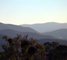 Brindabella dusk by Richard  Stanley