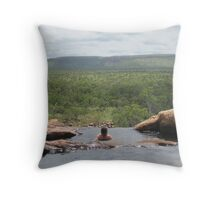 Valley of the Dinosaurs Throw Pillow