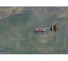 Tree under the Lake Photographic Print