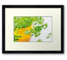Parsley Framed Print