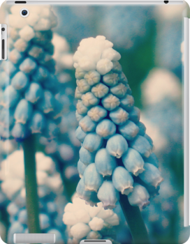 Muscari Field - JUSTART © by JUSTART