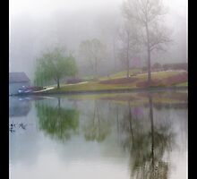 Misty Silence by Jim Haley
