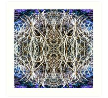 Dreamweaver 5 Art Print