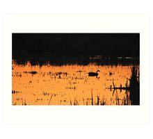 Sunset Swim Art Print