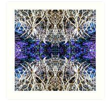 Dreamweaver 6 Art Print