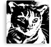 Cool Cat Graphic ~ Black  Canvas Print