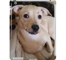 Pretty Posing Puppy iPad Case/Skin