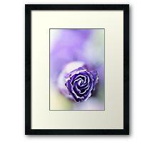 Purple breeze.... Framed Print
