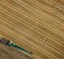 Ploughing a Field in Berkshire by mlphoto