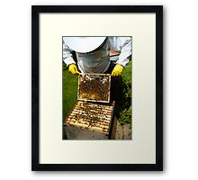 Bee Keeping in England Framed Print