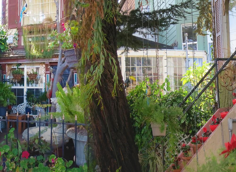 Lyon Street Sidewalk Garden by David Denny