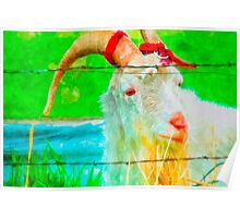 Idaho Billy Goat Poster