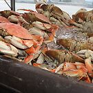 Dungeness crab at Fisherman's Wharf..... by DonnaMoore